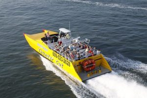 Cape May High Speed Boat Rides Activities In Cape May