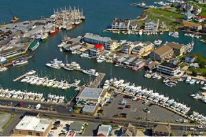 Aerial view of South Jersey Marina