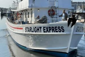 Starlight Fleet featured image