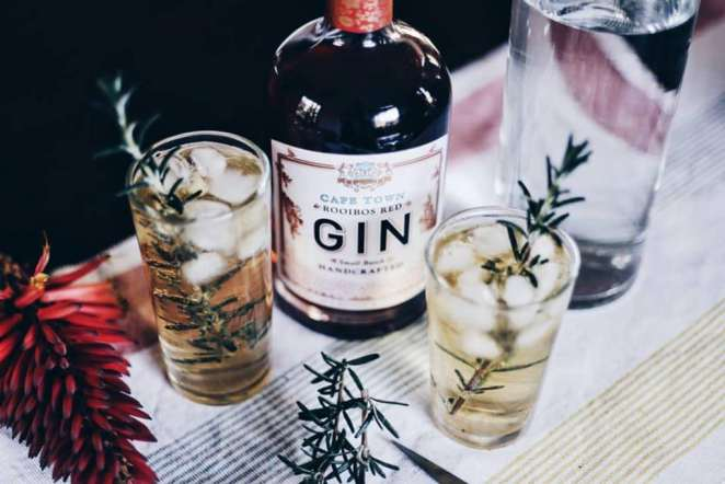 Image result for capetown gin