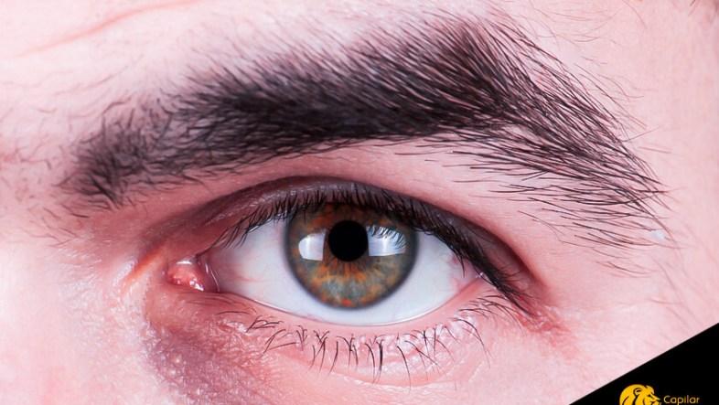 Tipos de cejas en hombres
