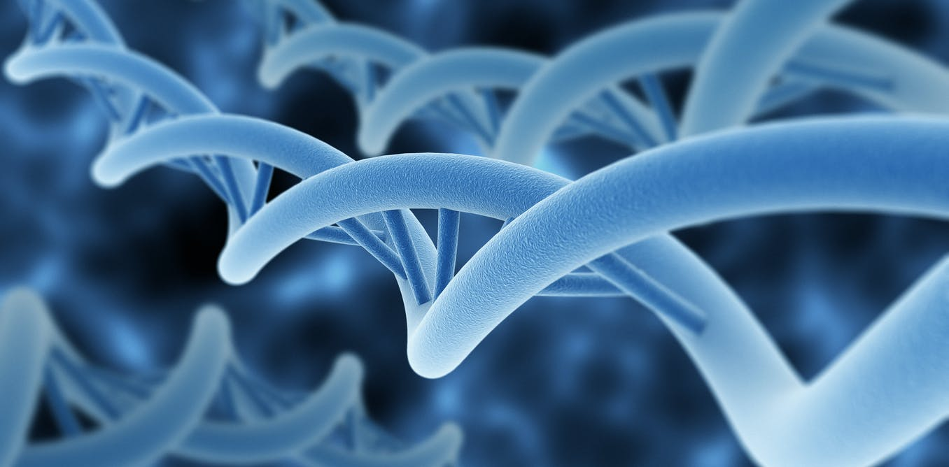 DNA-inspired 'supercoiling' fibres could make powerful artificial muscles for robots