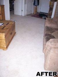 Our Work - Capital Carpet Care - The Carpet Savers ...