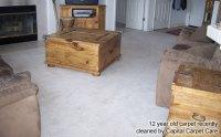 Capital Carpet Care - Carpet Saver - Carpet Repair ...