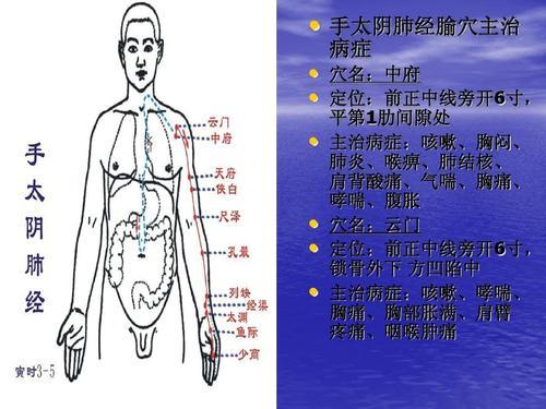 刮肺经 防肺病