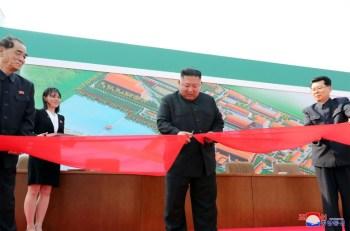 Why North Korean leader Kim Jong Un's health matters
