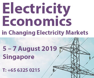 Electricity Economics 5-6 Aug Singapore
