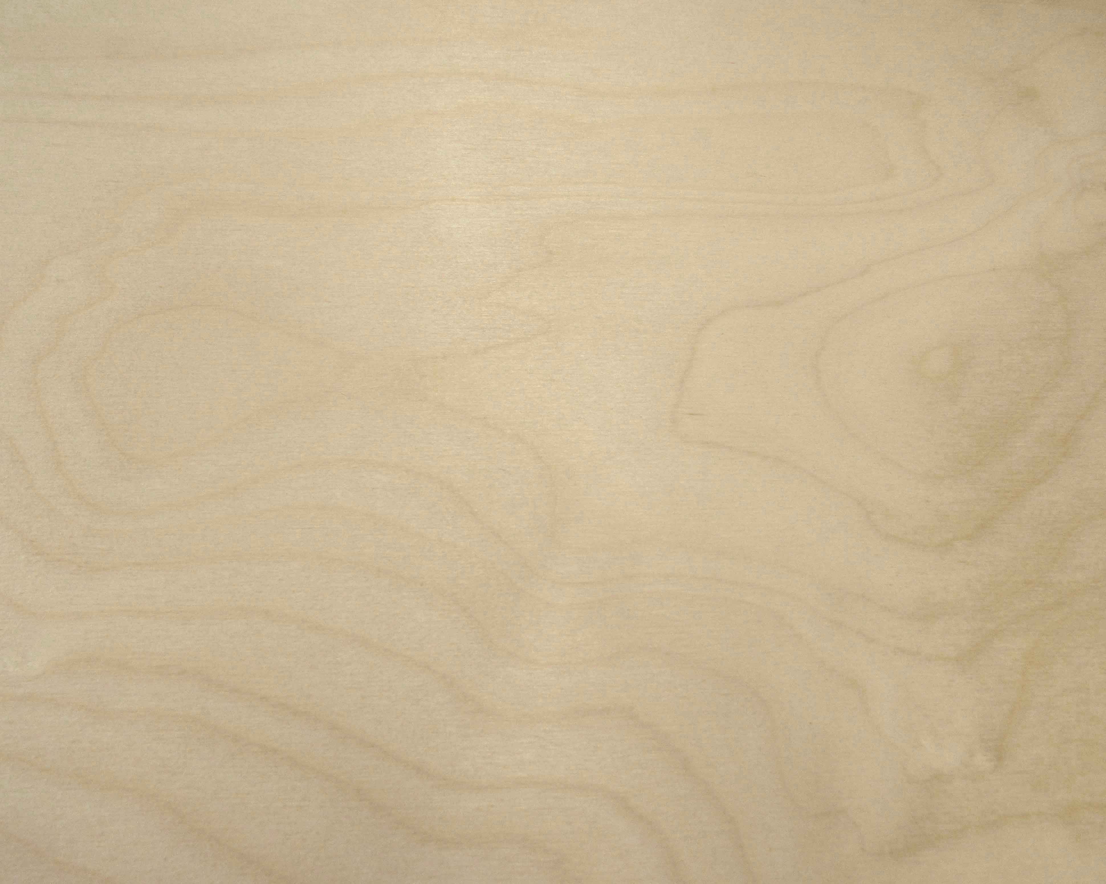Baltic Birch Plywood Texture