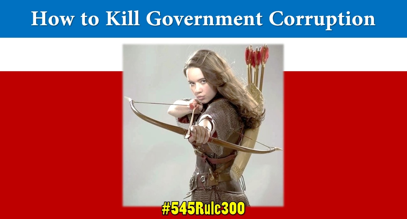 How To Kill Government Corruption - 545Rule300