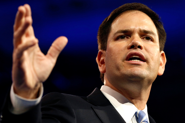 Senator Marco Rubio   (REUTERS/Kevin Lamarque)