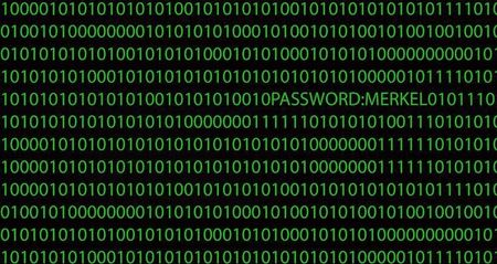 A computer with a series of numbers is seen in this picture illustration taken in Frankfurt October 28, 2013.   REUTERS/Kai Pfaffenbach