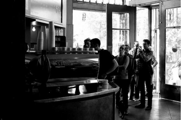 R.I.P. Bauhaus -- Chat Noir Photographie