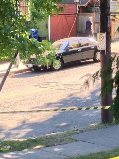 A downed wire and potential outage culprit near 20th and E John (Photo: Andrew Taylor)