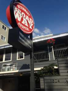 The big, new, rotating sign on 12th Ave