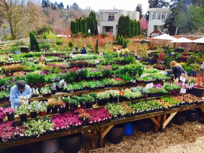 New owners have got the garden store looking good again (Image: City People's)