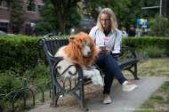 Aurora poses on the bench in her cowardly lion costume