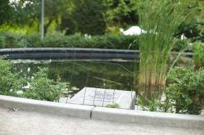 Volunteer Park duck fence