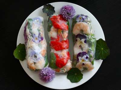 Eat the Rainbow: Make Your Own Fresh Rolls @ Seattle Seed Company
