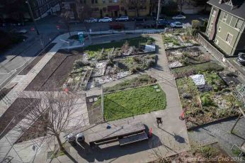 Work wraps up on Capitol Hill's Summit Slope Park enhancements and 'pedestrianized' street