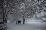 Snowpocalypse3-14