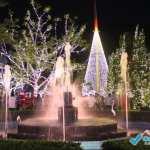 Venha se encantar no Brilho de Natal de Domingos Martins