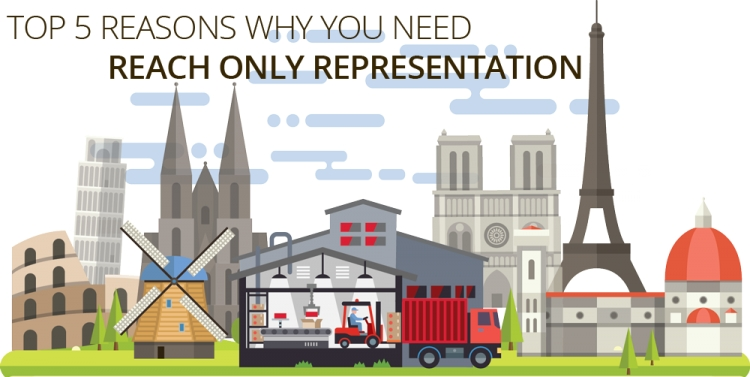 Top 5 reasons why you need a REACH Only Representation