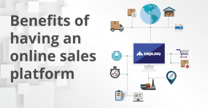 Benefits of having an online sales platform for your products