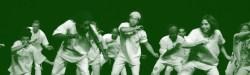 Capoeira De Ouro