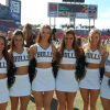 USF Bulls 2015 NCAA Football Gambling Odds & Predictions