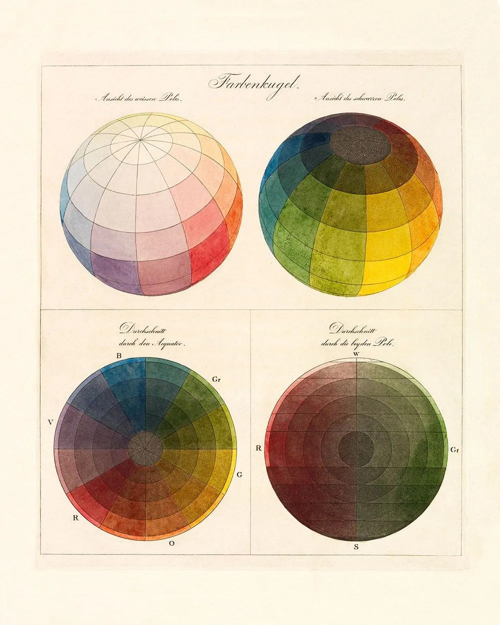 hight resolution of color theory diagram print