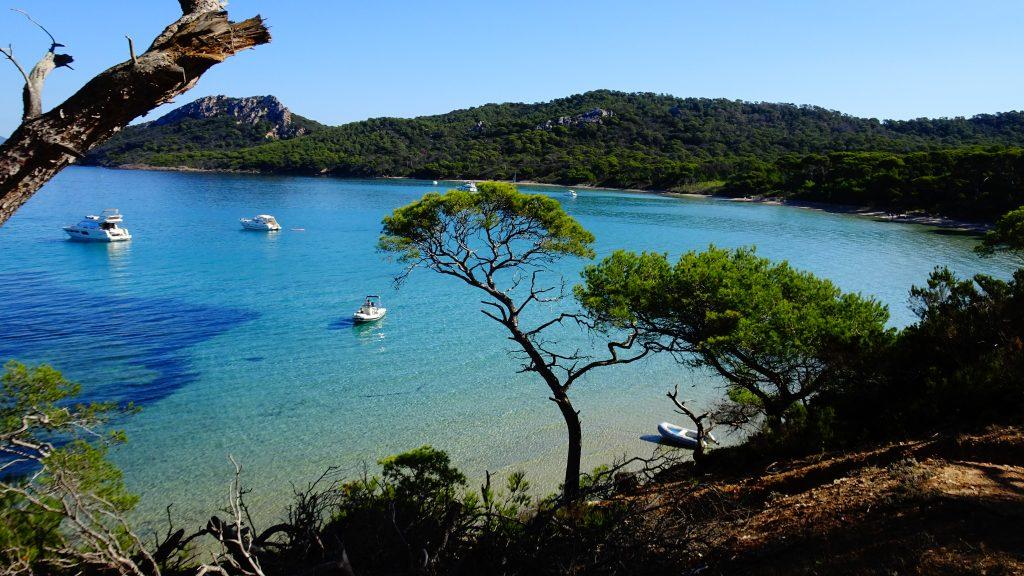 Cap Spiruline Var Provence locale