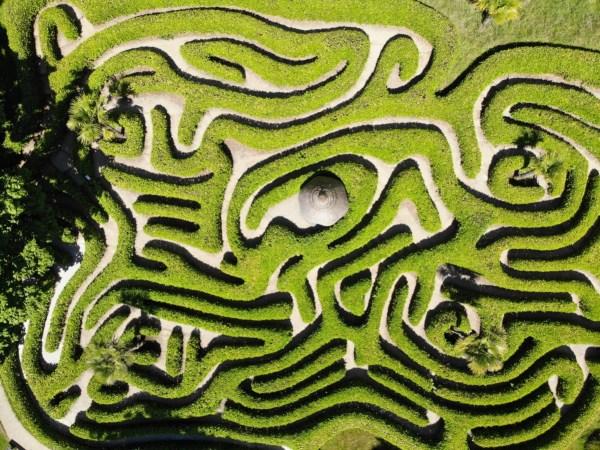 cornwall maze