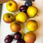 vegan apple and plum crumble