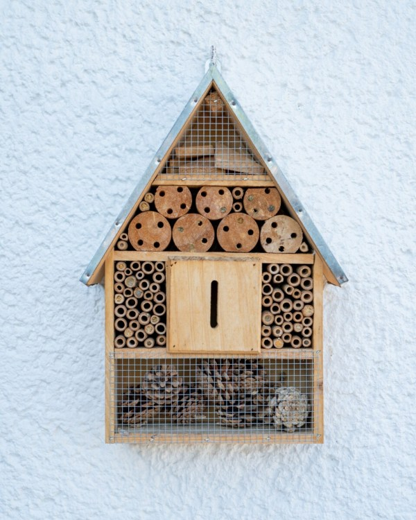 insect bee hotel