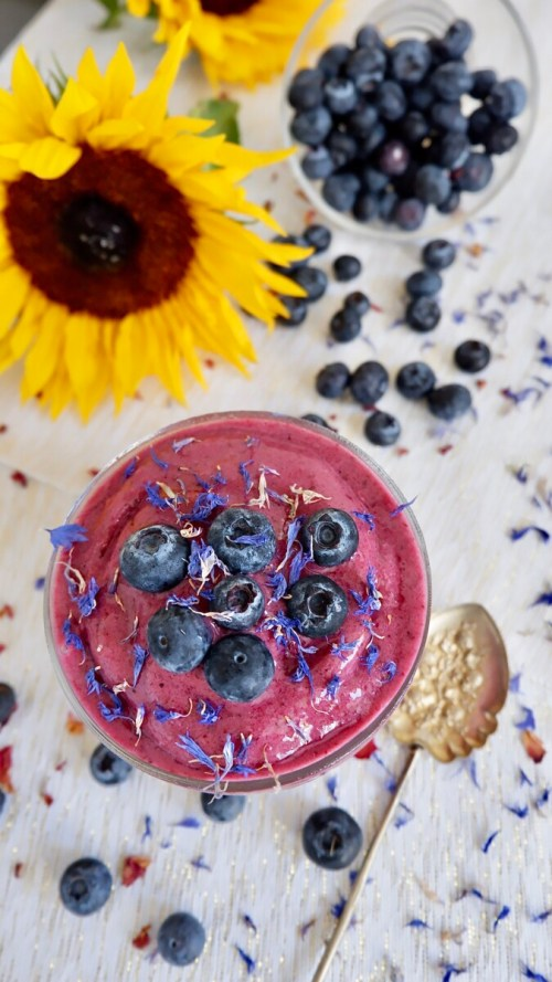 blueberry shush with coconut milk