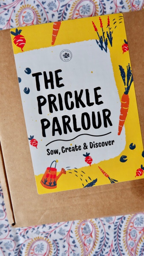 The Prickle Parlour: Ethical and Green Picks