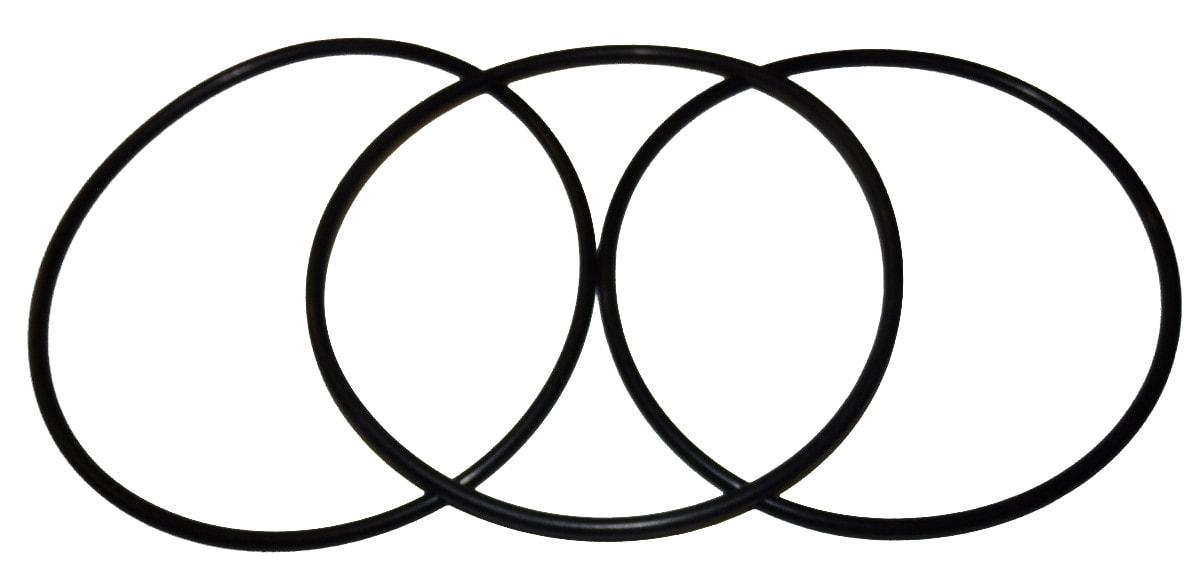 Pentek Pentair 151120 O-Ring (3 Pack)