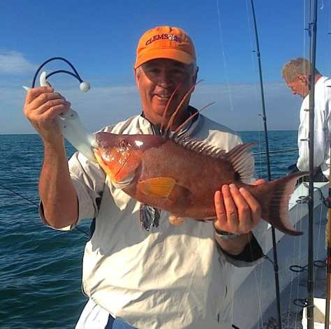 Hog Snapper caught offshore of Captiva on Sanibel & Captiva charters!