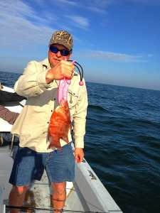 More Hog Snapper caught offshore of Captiva on Sanibel & Captiva charters!