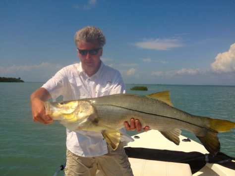 Big Snook caught of the Sanibel oyster bar, Sanibel & Captiva Islands & Fort Myers Charters & Fishing Guide Service.