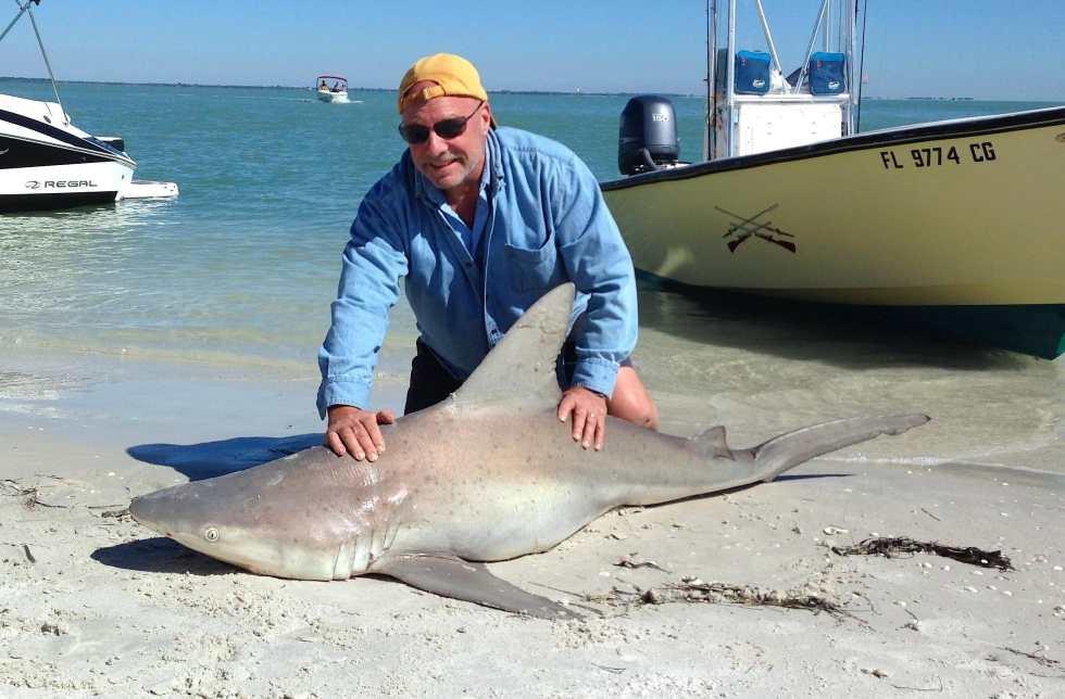 Sandbar Shark, 7-20-14, Redfish Pass, North Captiva, Sanibel & Captiva Islands & Fort Myers Charters & Fishing Guide Service.