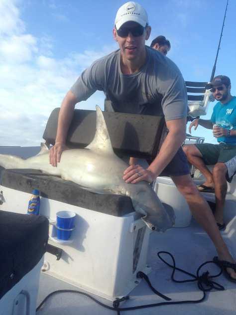 Hammerhead Shark, 5-17-14, Sanibel & Captiva Islands & Fort Myers Charters & Fishing Guide Service.