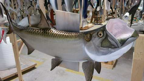 Custom Tarpon Mount