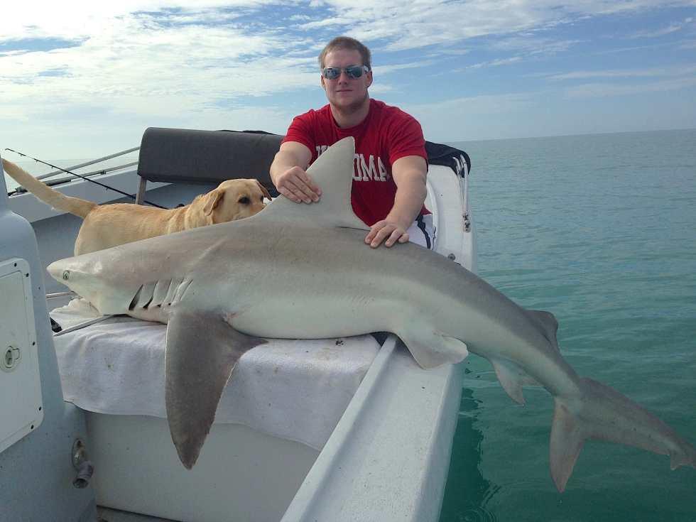 Bull Shark, 2-2-15, Sanibel Fishing & Captiva Fishing & Fort Myers Fishing Charters & Guide Service.