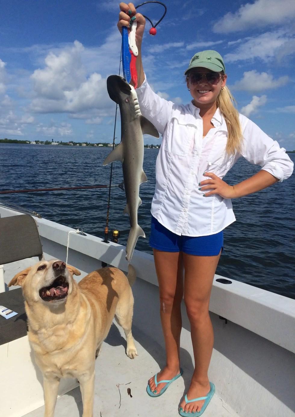 Bonnethead Shark, Sanibel Fishing & Captiva Fishing, Wednesday, 8-19-15 ~ #Sanibel #Captiva.