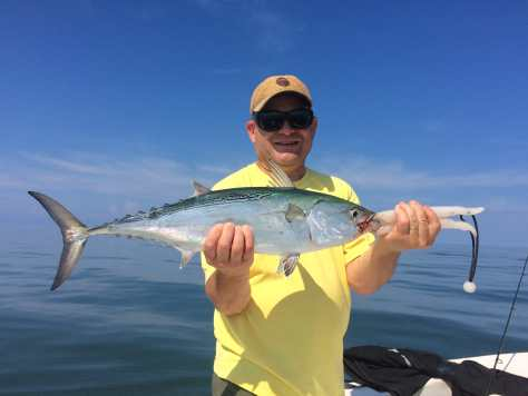 False Albacore Tuna, Bonita, Sanibel Fishing & Captiva Fishing, Saturday, 10-10-15 ~ #Sanibel #Captiva.