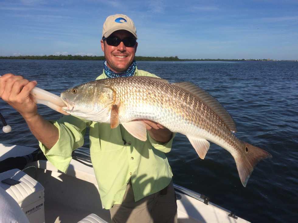 Redfish, Sanibel Fishing & Captiva Fishing, Saturday, 10-31-15 ~ #Sanibel #Captiva.