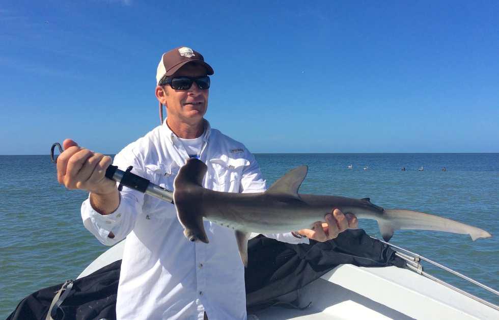 Hammerhead Shark, Sanibel Fishing & Captiva Fishing, Friday, 11-27-15 ~ #Sanibel #Captiva.
