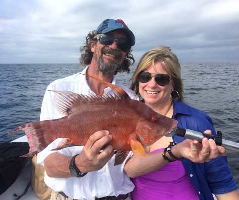 Hogfish Or Hog Snapper, Sanibel Fishing & Captiva Fishing, Sanibel Island, Monday, May 22, 2017. File Photo.