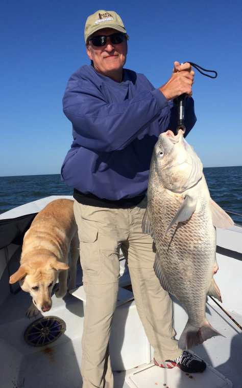 Big Black Drum, Offshore, Sanibel Fishing & Captiva Fishing, January 1, 2018, [File Photo - Friday, 2-19-16].